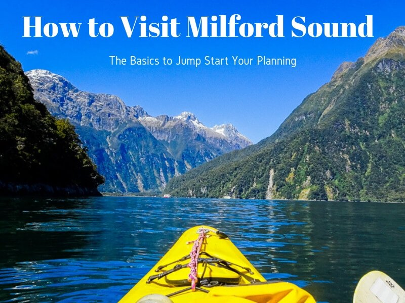 How to Visit Milford Sound: All the Basics to Jump Start Your Planning