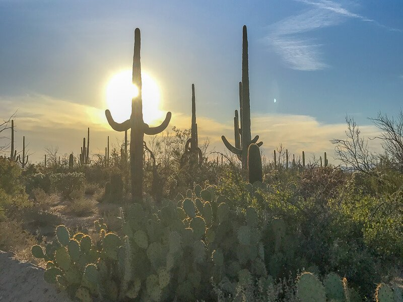 See The Best Of Arizona With This 7 Day Road Trip