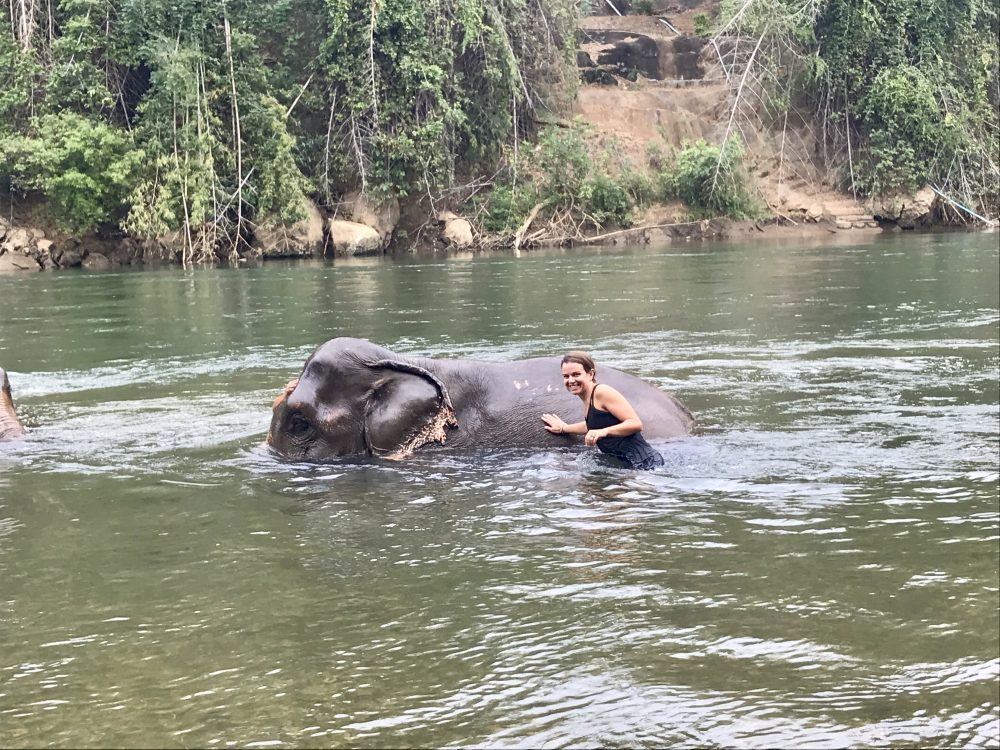 Bathing elephants in river kanchanaburi