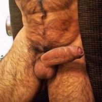 This hairy bear with abs and uncut, veiny thick cock  could please me for hours by trying to please him properly.