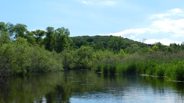 Milwaukee River East Branch