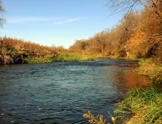Galena River
