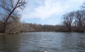 Fox River Illinois Tributary