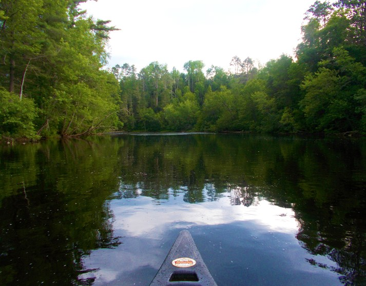 Pine River Oxbow (Florence County)