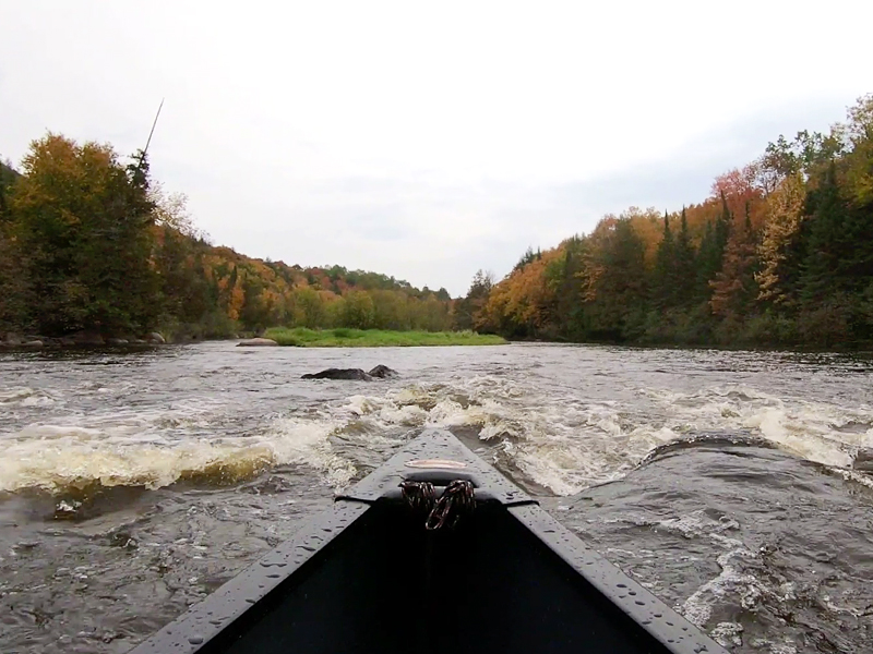 Wolf River Video