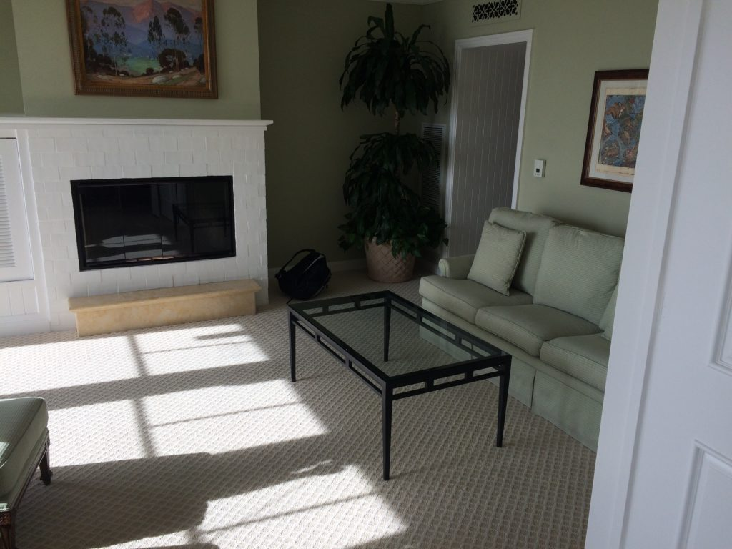 The sitting area with pullout couch