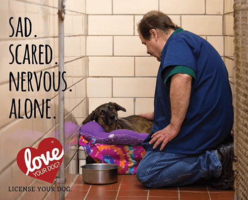 Dog inside shelter with a man kneeling next to him.