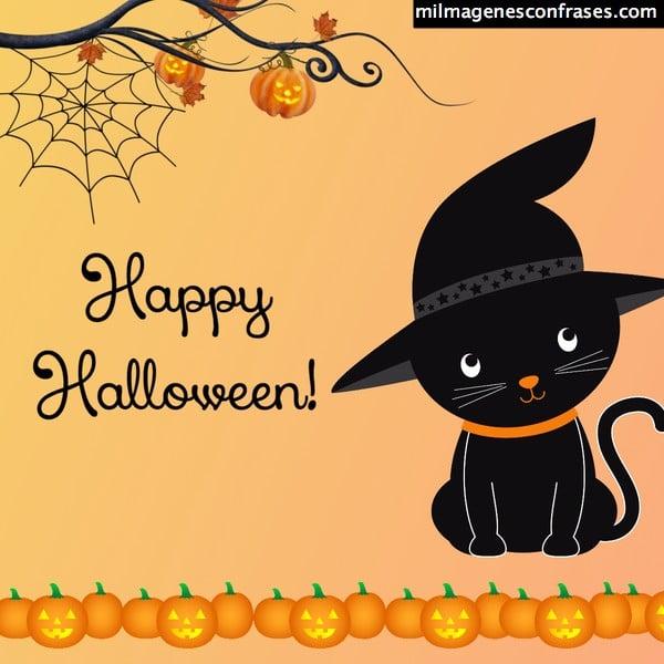 imagenes halloween noche de brujas
