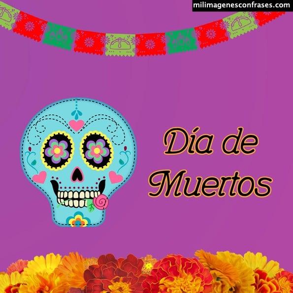 Imágenes de feliz día de muertos