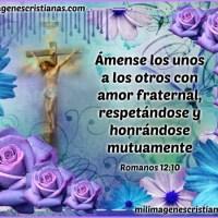 Ámense los unos a los otros - Romanos 12:10
