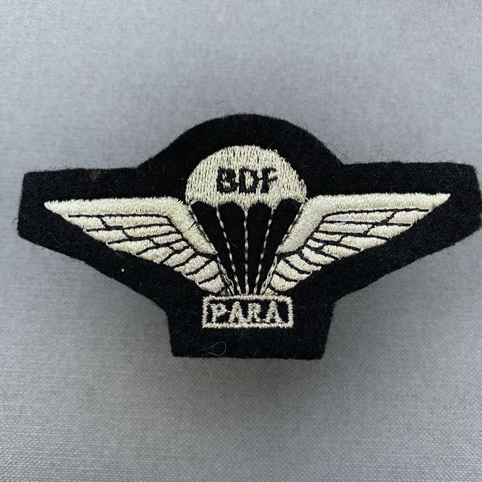 BDF Botswana Defence Force Para Wing Embroidered Badge 1