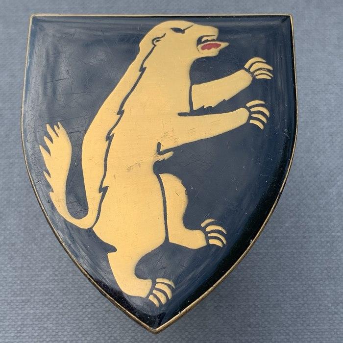 SADF Africa 1 SA Infantry Battalion Border War Flash Badge
