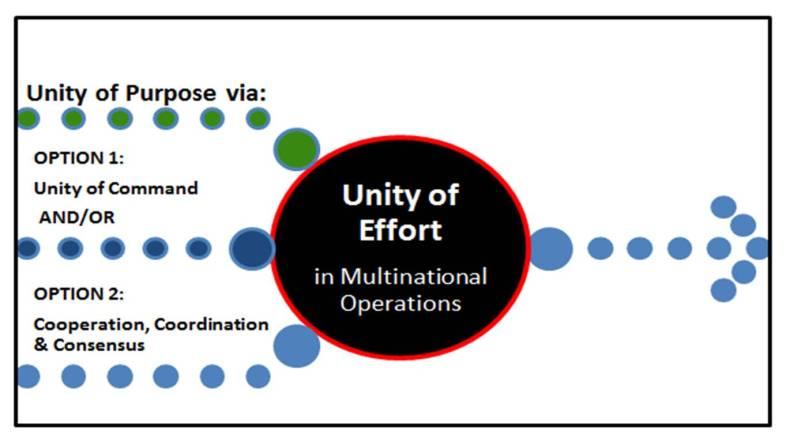 "7 The Fundamental Principle of ""Unity of Effort"" in"