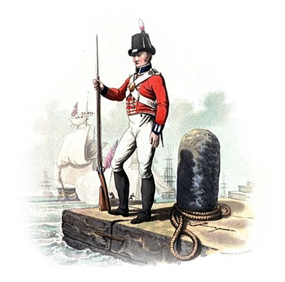 A Napoleonic-era Royal Marine. (Image source: WikiCommons)