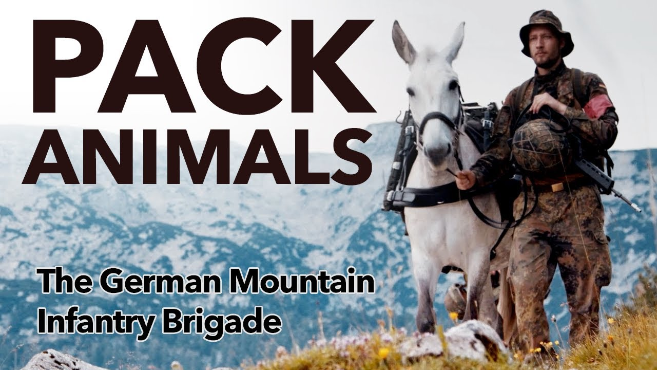 Meet The German Mountain Infantry Brigade and its four-legged companions