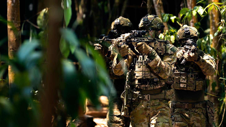 Royal Australian Regiment 2nd Battalion (Amphibious)