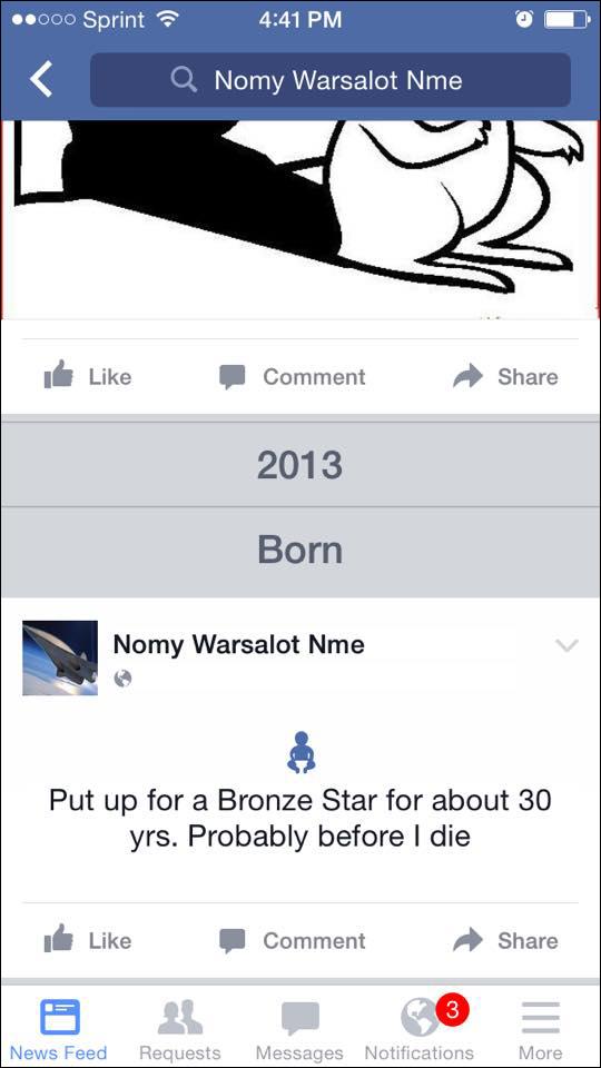 skrlin-bronze star