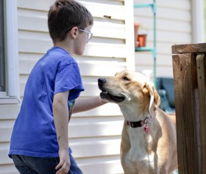 Benefits of pets for autistic children.