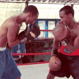 havana-boxing-training