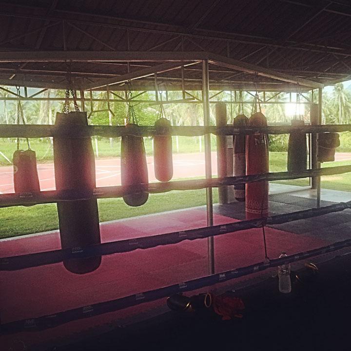 301 gym
