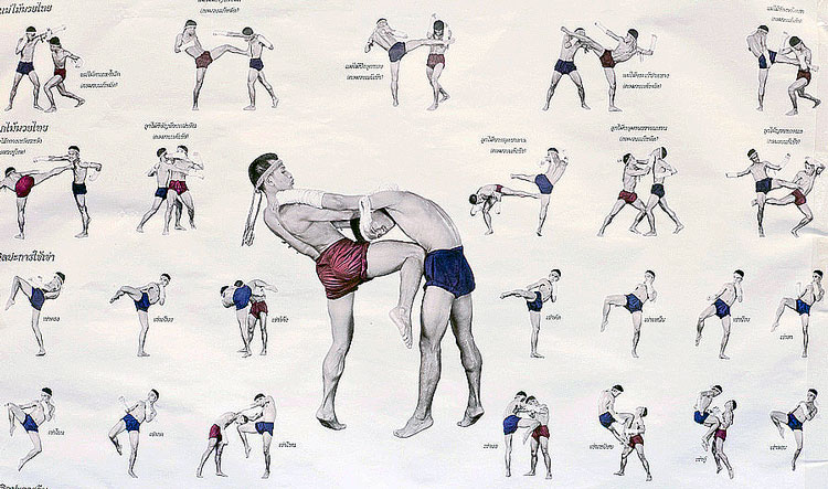 traditional muay thai fight stance