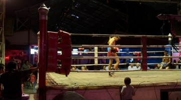 train muay thai in chiang mai