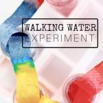Summer learning activities with water are great for summer!