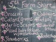 5th farm share