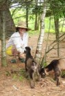 Bree and the baby miniture goats