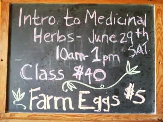 Medicinal Herb Class Sign