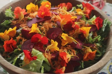 colorful salad with beets and nasturtium flowers