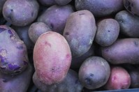 purple and pink potatoes