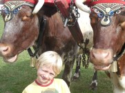 Daire and Milking Shorthorn Team at the Fair