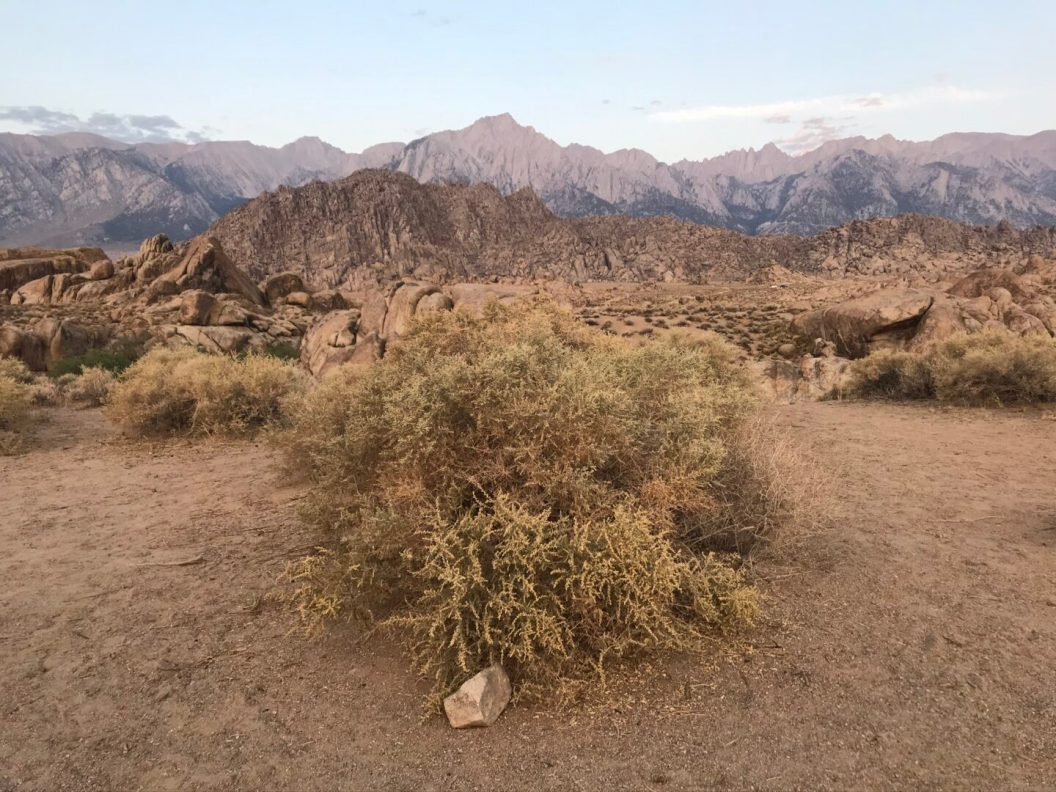 The Alabama Hills is a mecca that draws photographers from all over the world.