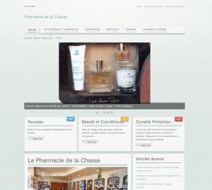 Création site web pharmacie de la chasse