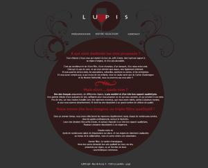 Création site web vente de vin