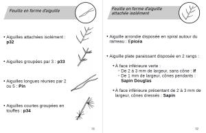exemple de page de détermination des arbres et arbustes