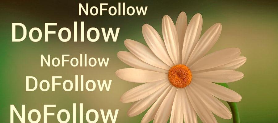 dofollow-nofollow
