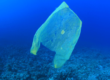Reducing Plastic Waste is Important but Difficult!
