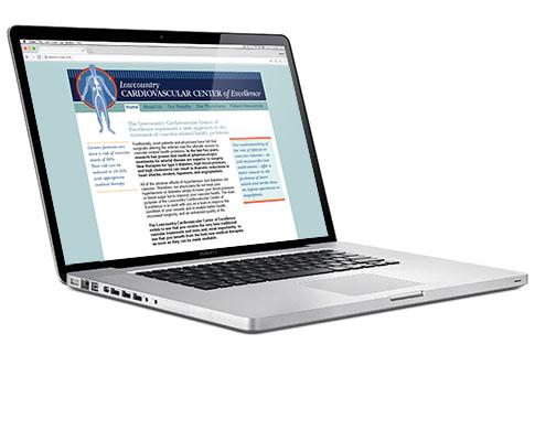 LCCVE Website Design