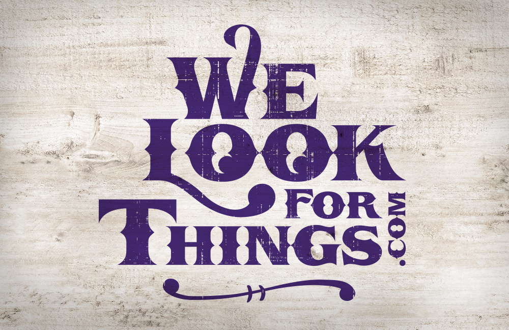 WeLook_logo_page