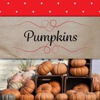 pumpkins-inThePatch