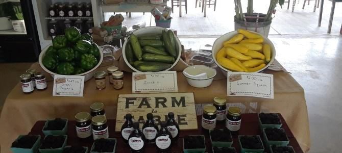 Blackberries, Strawberries, Cucumbers, and More!
