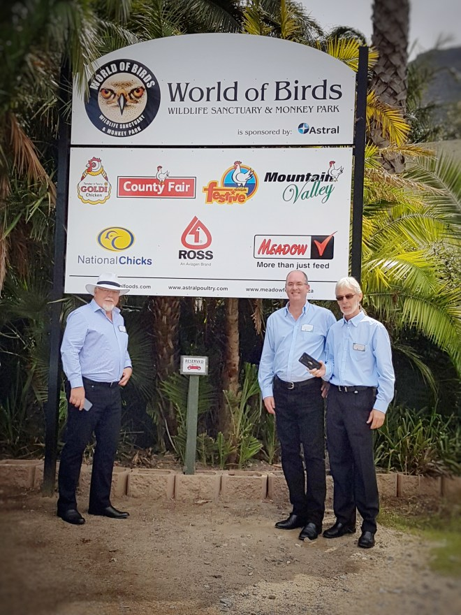 astral foods powerful lifeline rescued world birds