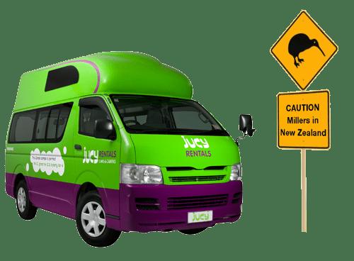 kiwi-MillerCondo