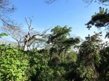 Wanderung auf den Cosigüina