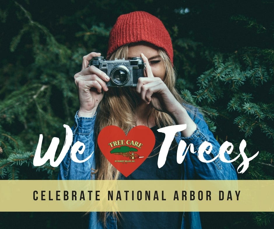 national-arbor-day