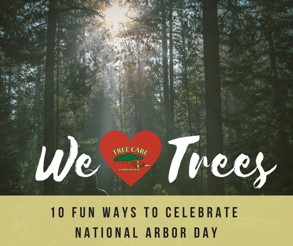 Fun Ways to Celebrate Arbor Day