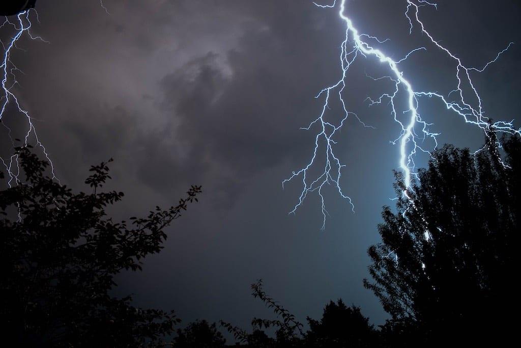 Tree struck by lightning | MillersTreeCare.com