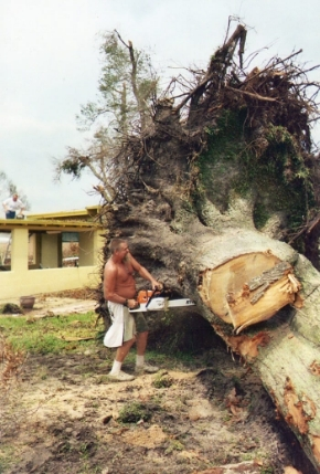 Robert Miller with chainsaw removing giant tree after hurricane Katrina